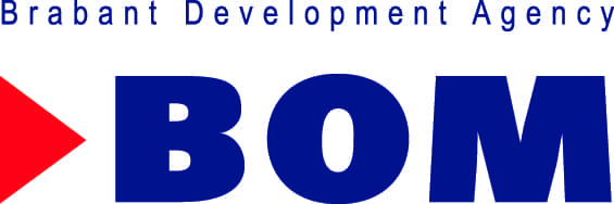 BOM Foreign Investments logo